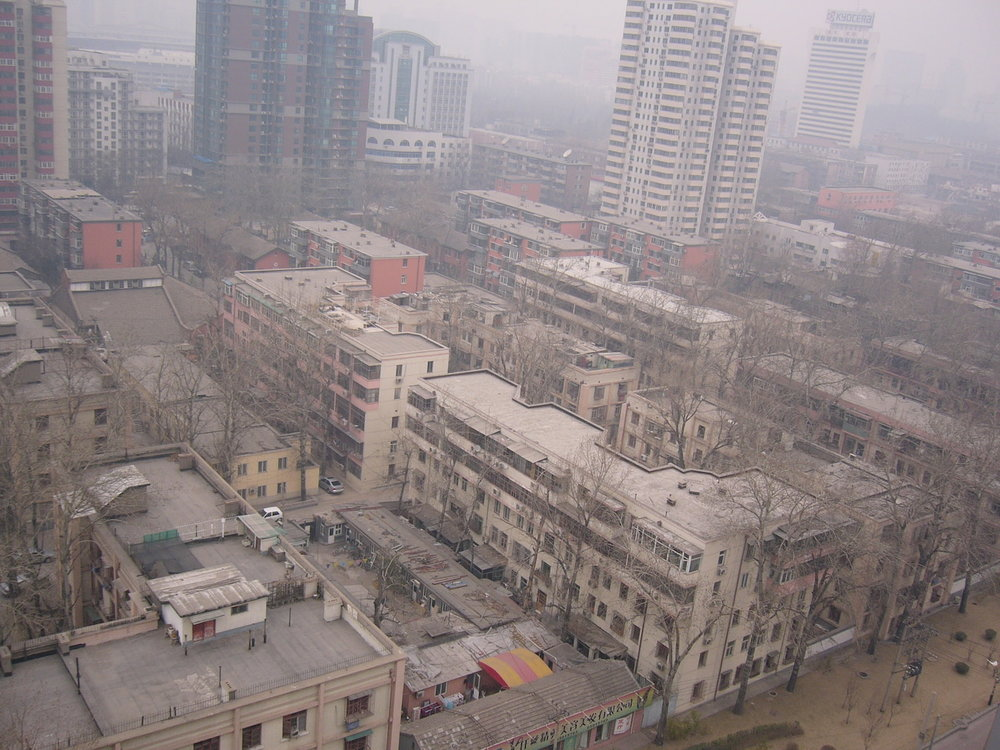 mark_benecke_china - 398.jpg