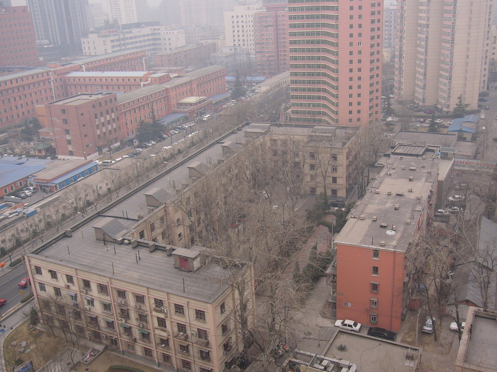 mark_benecke_china - 402.jpg