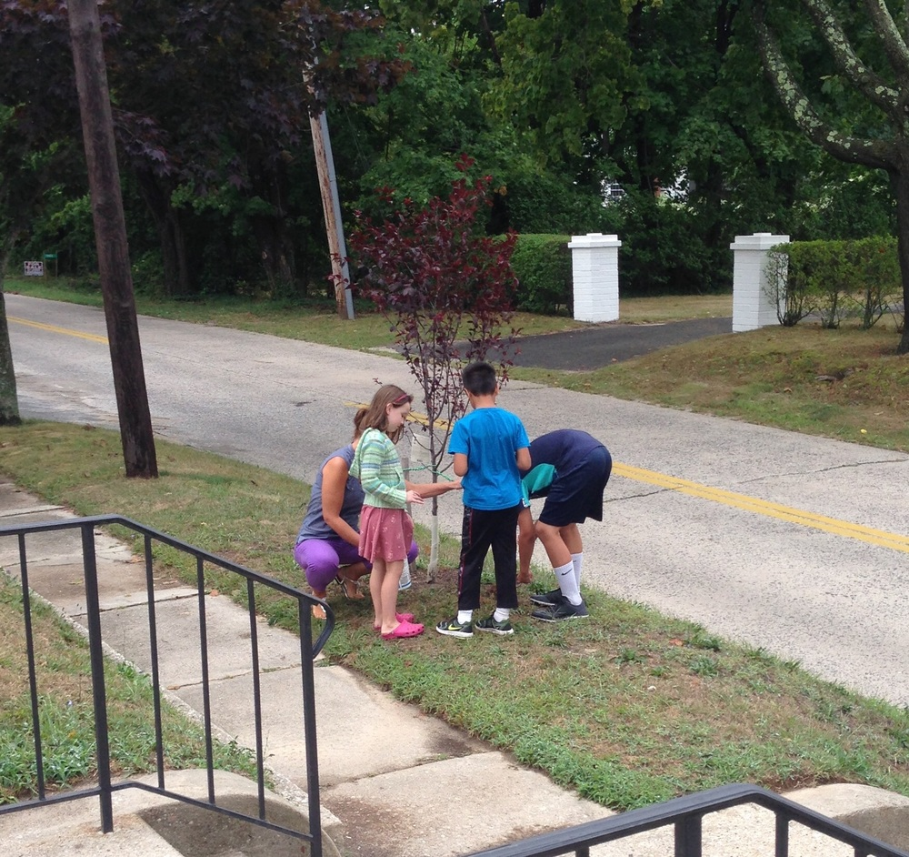 Mrs. Mauro, Caroline, Mel, and Robbie plant around Sadie Heston's tree
