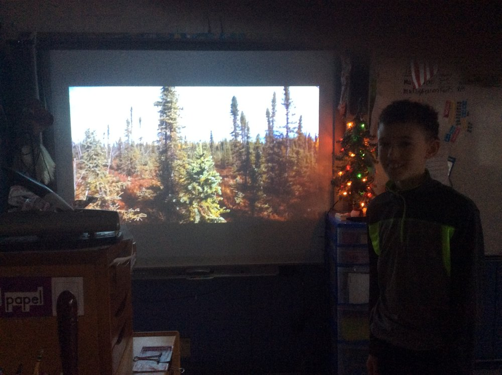 Henry made an iMovie and used it to present his Taiga biome.