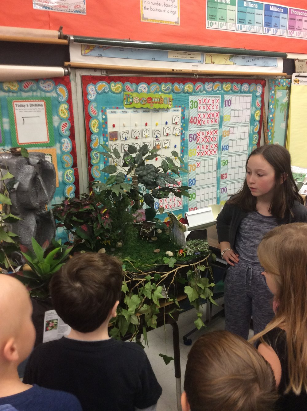 Caroline's biome was Rainforest. She created this interactive display that incorporated a waterfall, pond and some live plants.