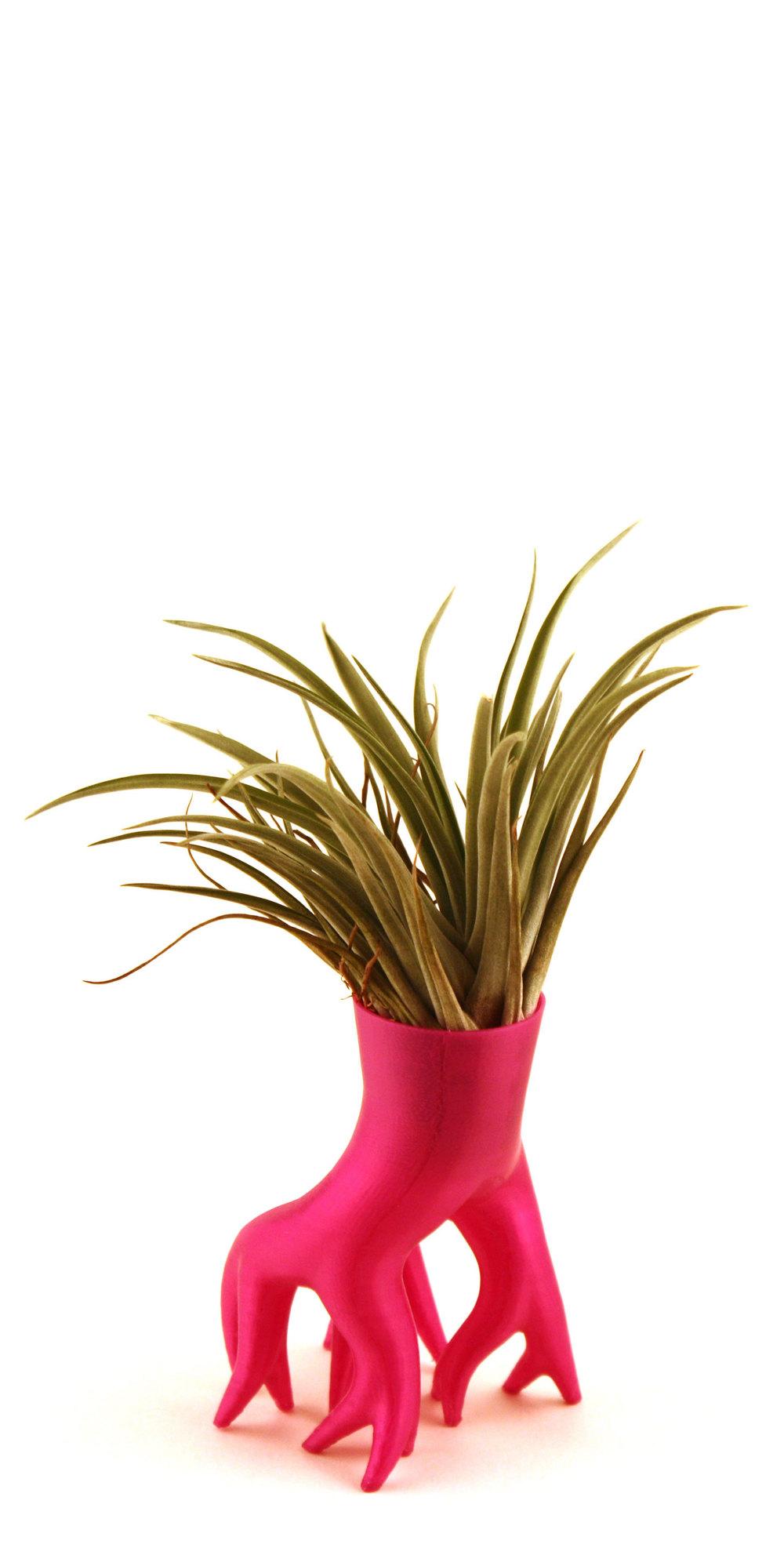 Mangrover, 3D printed pot