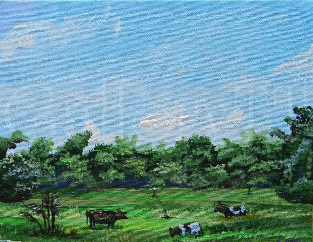 Central Pasture 8 x 10 - Samantha Rochard.png