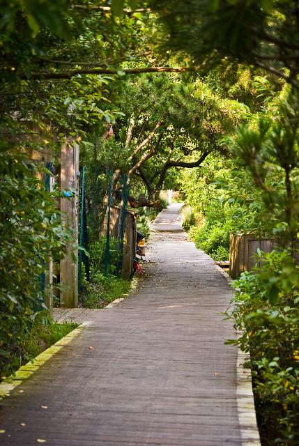 walkway 1.jpg