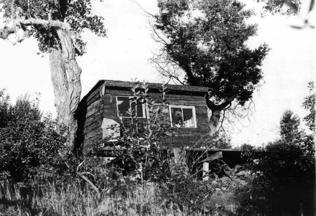 redwoodslabcab.jpg
