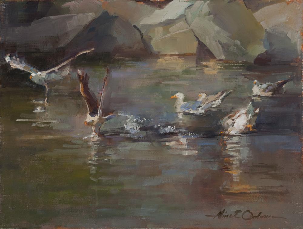 """Seagulls  o/c 16"""" x 12"""""""