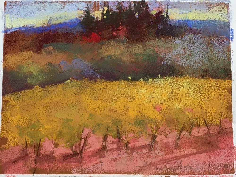 Vineyard  9 x 12