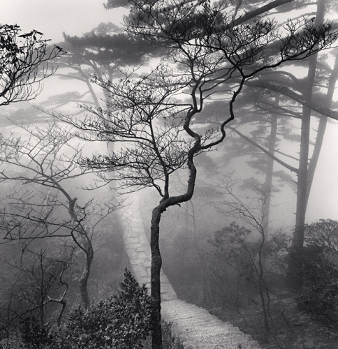 Huangshan Mountains, Study 20, Anhui, China, 2009