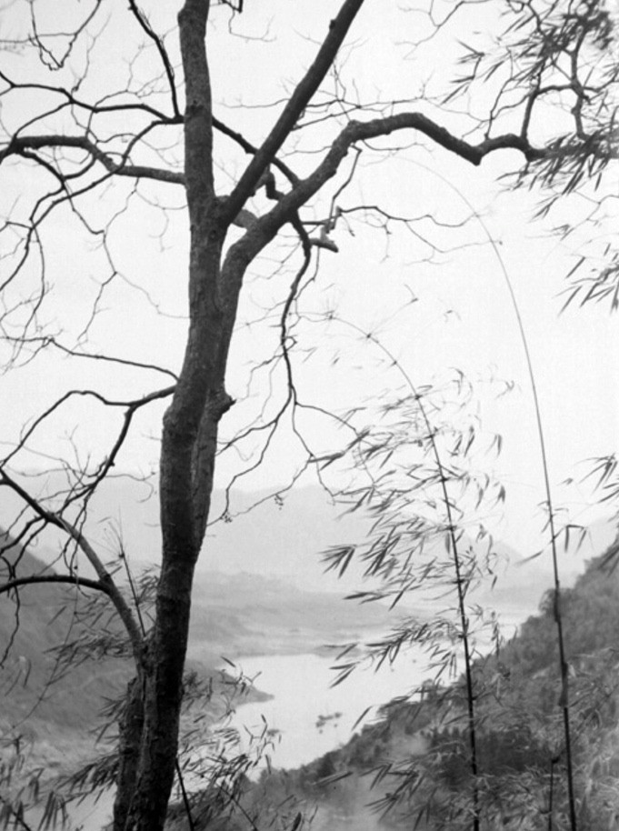 View of a river through bamboo- Chungking-1940_905.jpg