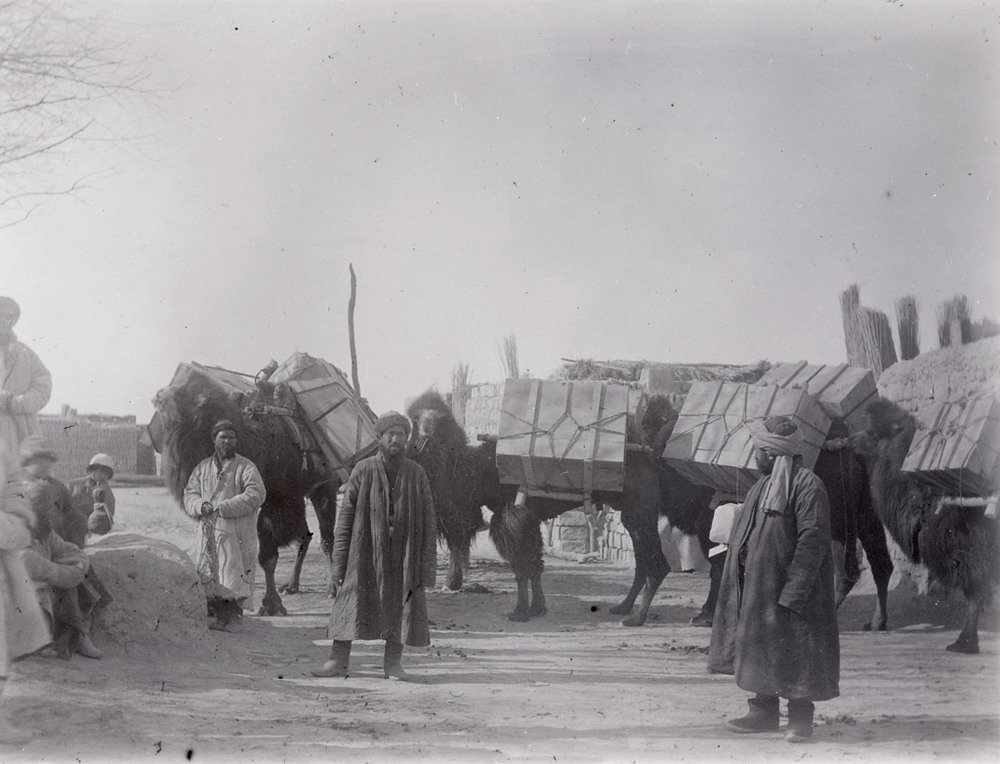 Cases starting from Miran with Emin Ali and Sher Ali Khan, February 1914. Photo 392/28(334) © British Library