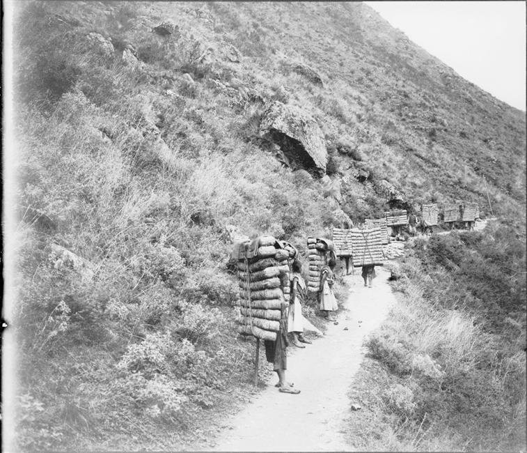 Porteurs de thé au Sichuan, 1903, gelatin silver glass plate negative