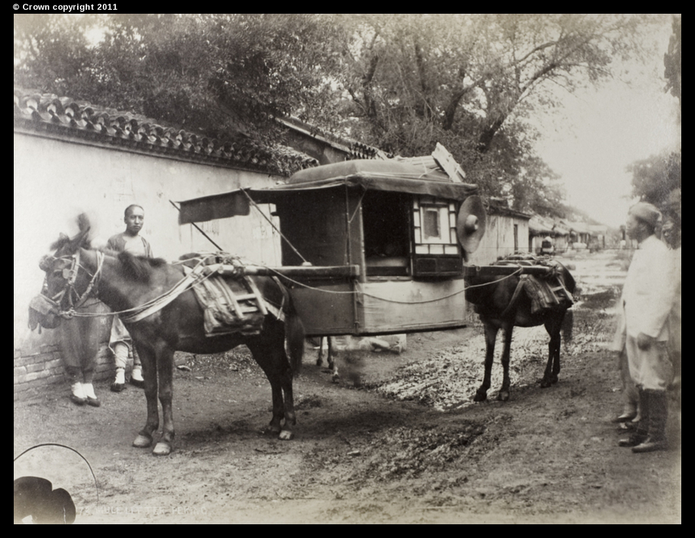 Mule litter, Peking, circa 1870-90