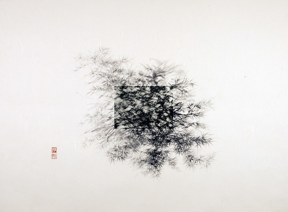 "Michael Cherney & Arnold Chang, ""Ink Bamboo"", photography and ink on xuan paper, 2015"