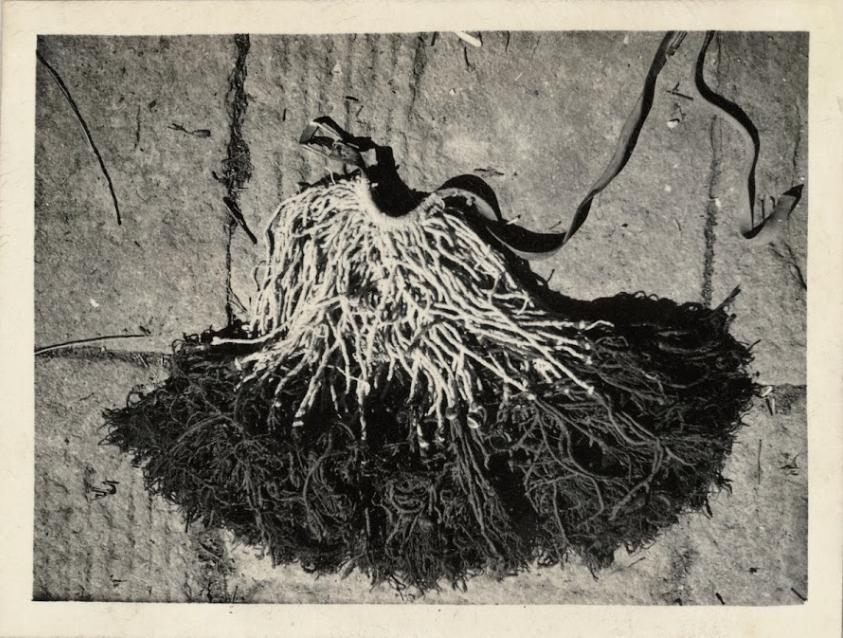 zhuang-xueben-china-hinterland-1930s-photography-of-china-10.png