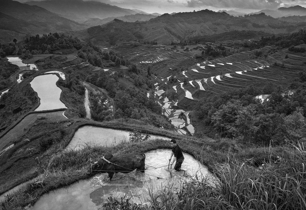 kuang-huimin-ancient-kam-rice-of-millennium-photography-of-china-(7).jpg