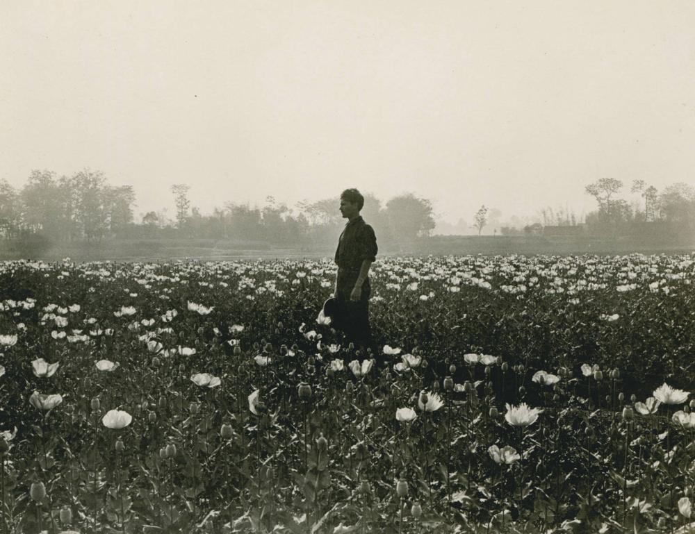 R.T. Chamberlin, 1909-04
