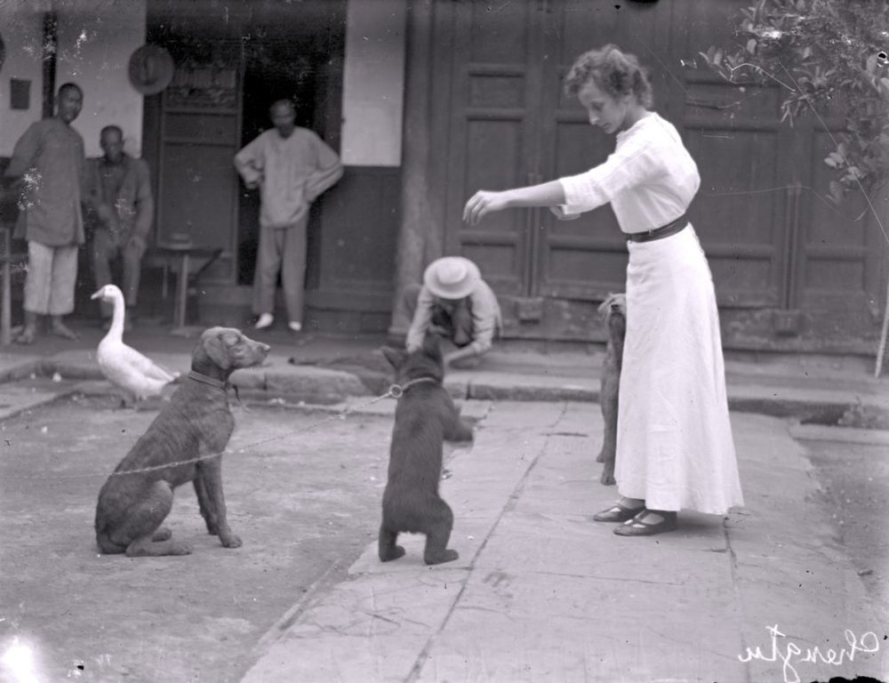 Hedwig in the courtyard with her sun bear Moritz and other animals, 1912-1914