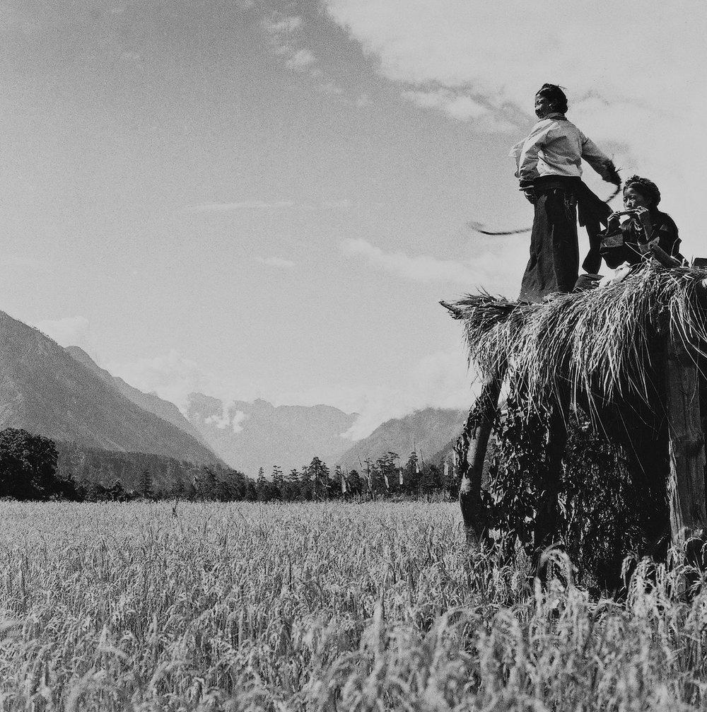 lan-zhigui-tibet-1950s-photography-of-china-4.jpg
