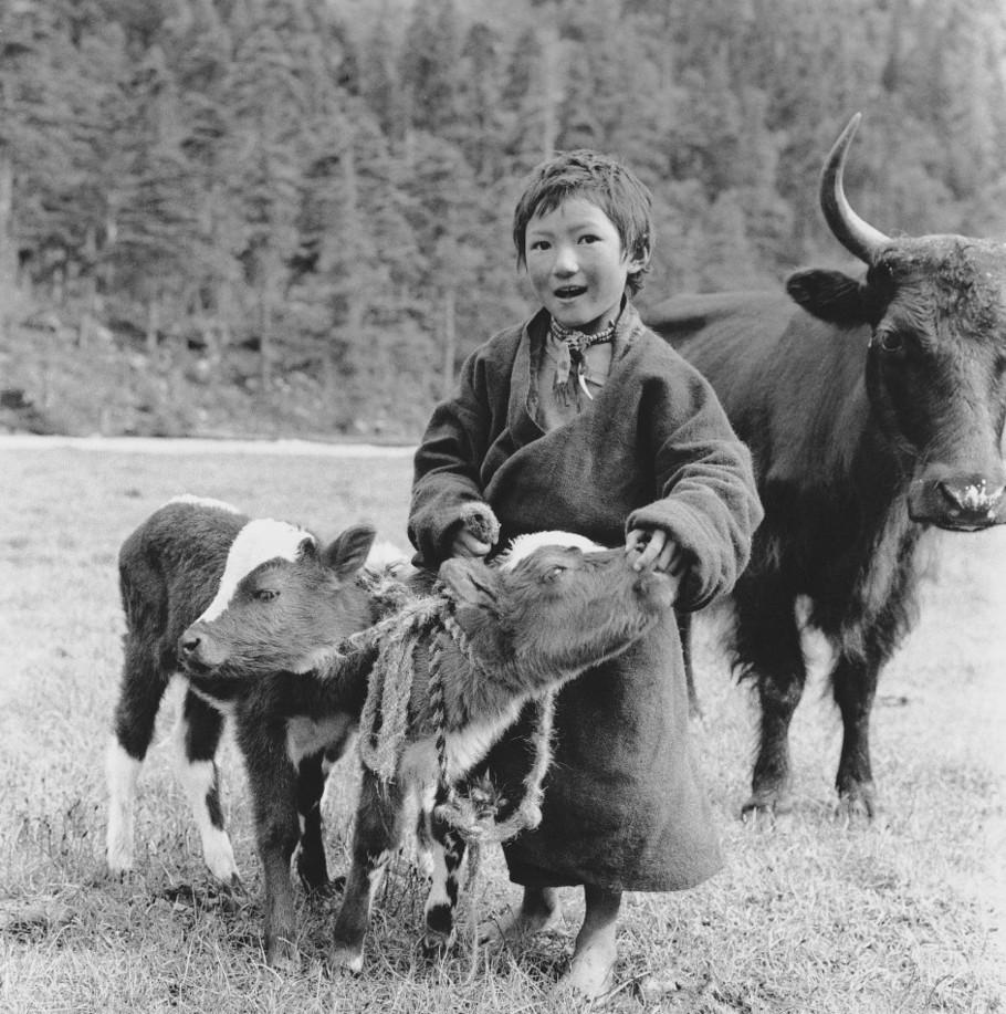 lan-zhigui-tibet-1950s-photography-of-china-9.jpg