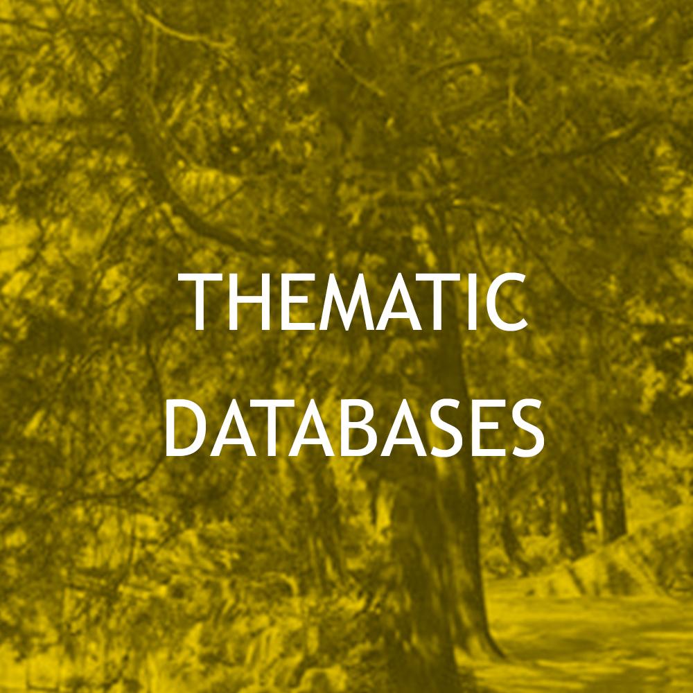 database-5.jpg