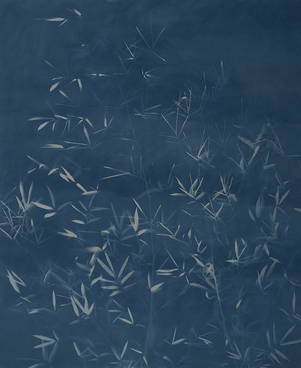 Bamboo No. 2, Cyanotype on Canvas, 240 x 168 cm, 2015 | Photo Copyright Artist Zhang Dali and Courtesy of Pékin Fine Arts