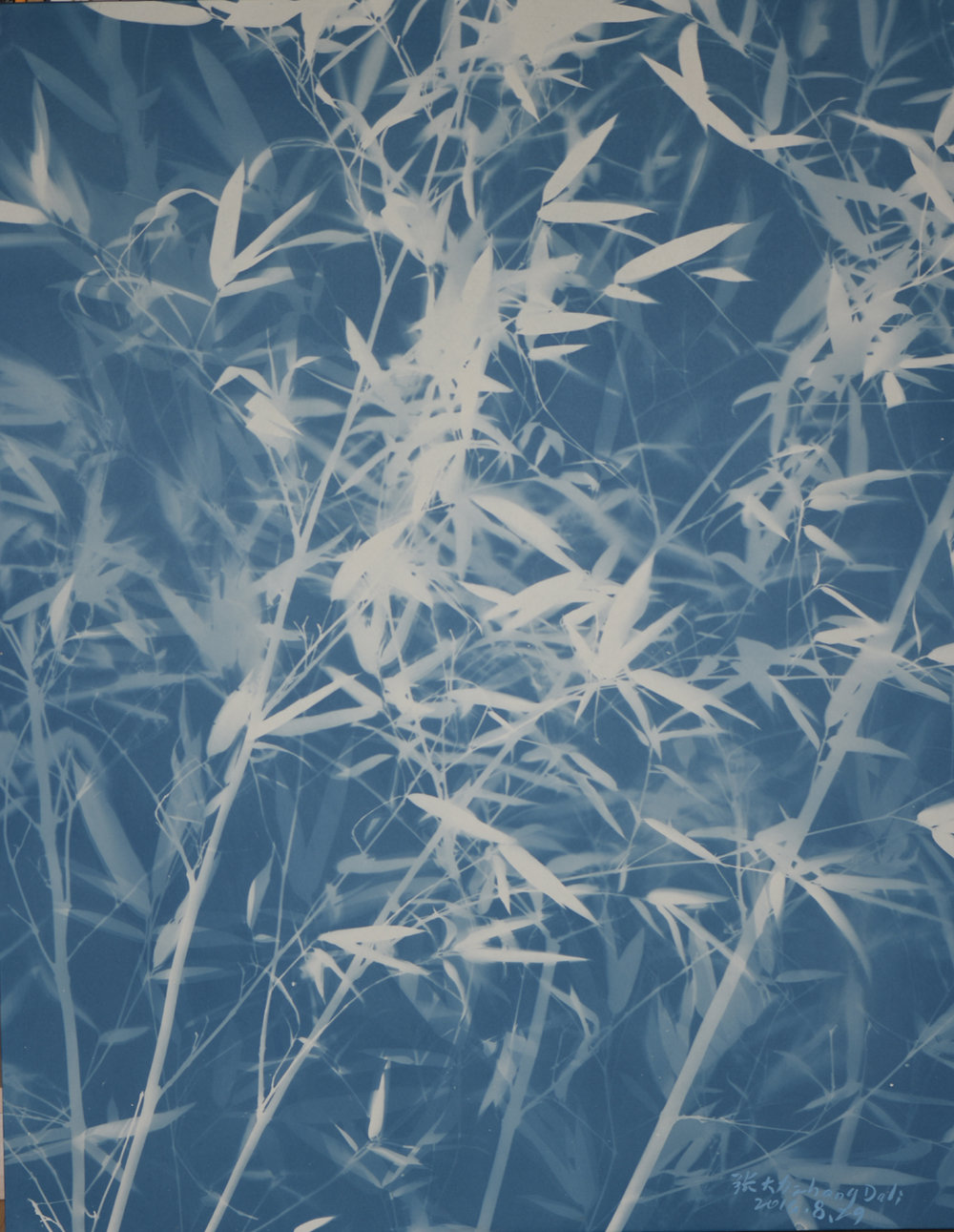 Bamboo Series No.12, Cyanotype on Canvas, 108 x 86 cm, 2016 | Photo Copyright Artist Zhang Dali and Courtesy of Pékin Fine Arts