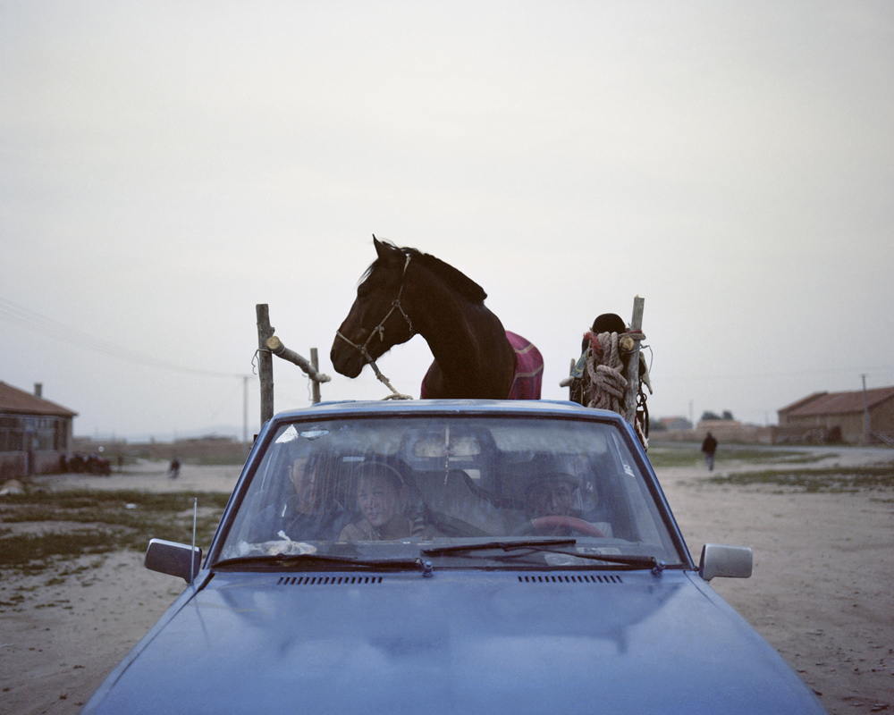 A horse on the Pickup,Inner Mongolia, 2010-li-wei-photography-of-china.jpg