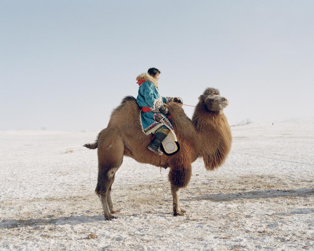 Camel rider,Inner Mongolia,2010-li-wei-photography-of-china.jpg