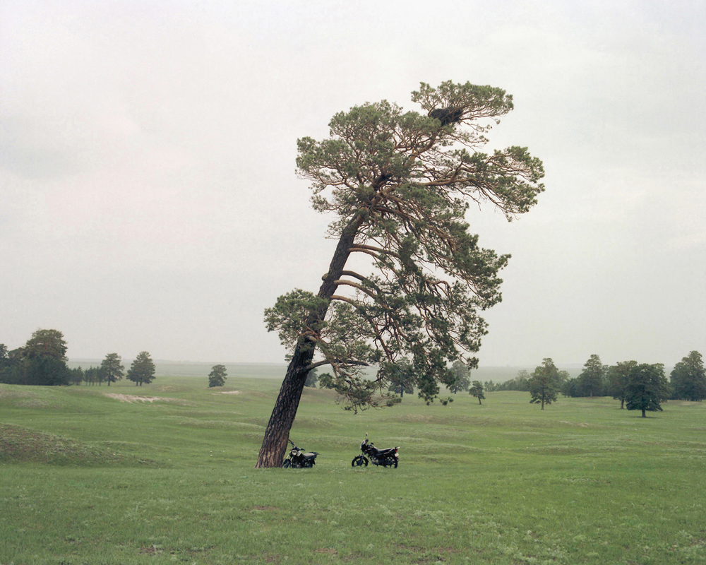 Tree and motobike, Inner Mongolia,2011-li-wei-photography-of-china.JPG