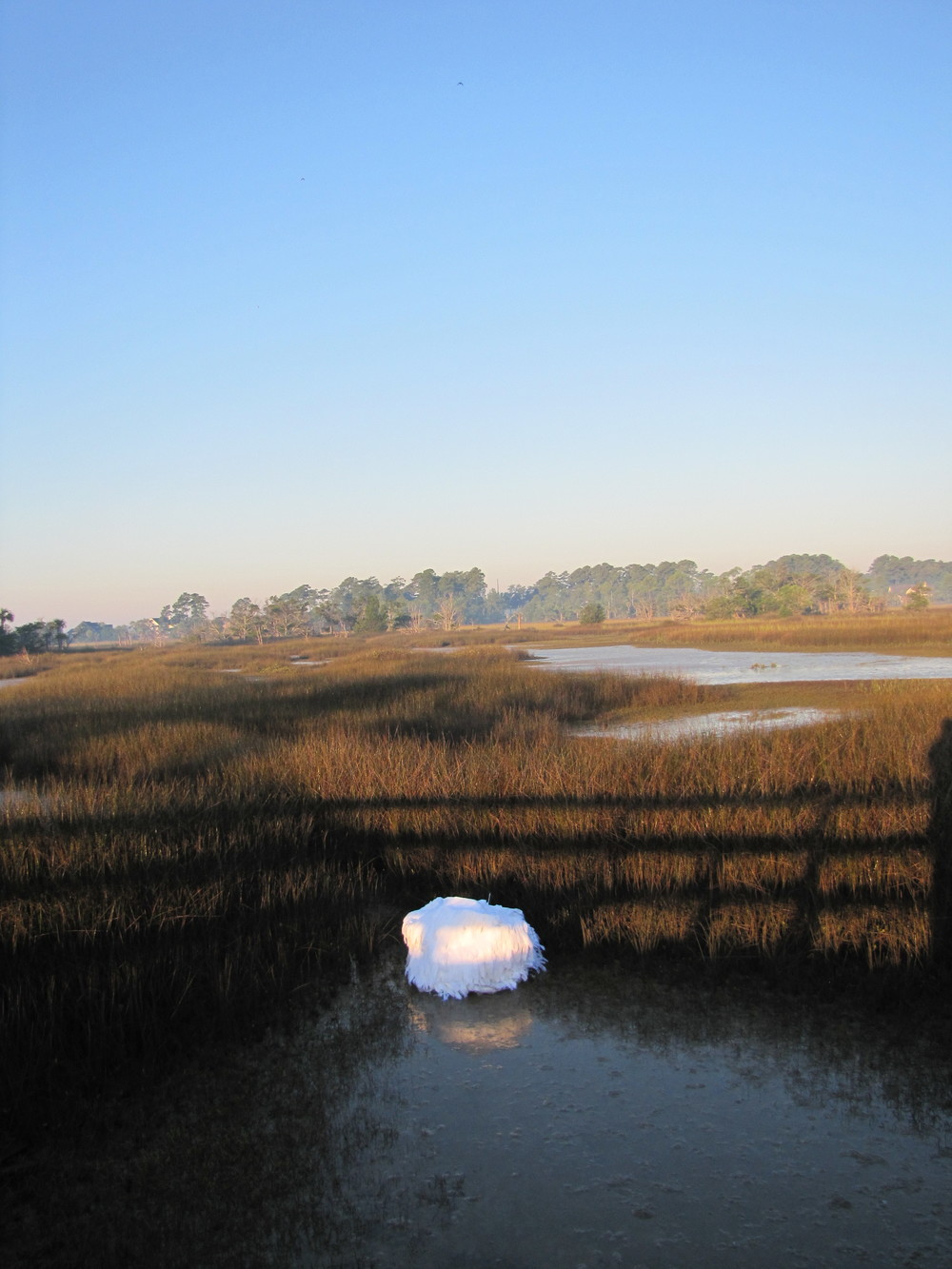 Marsh Float, 2010, Savannah GA