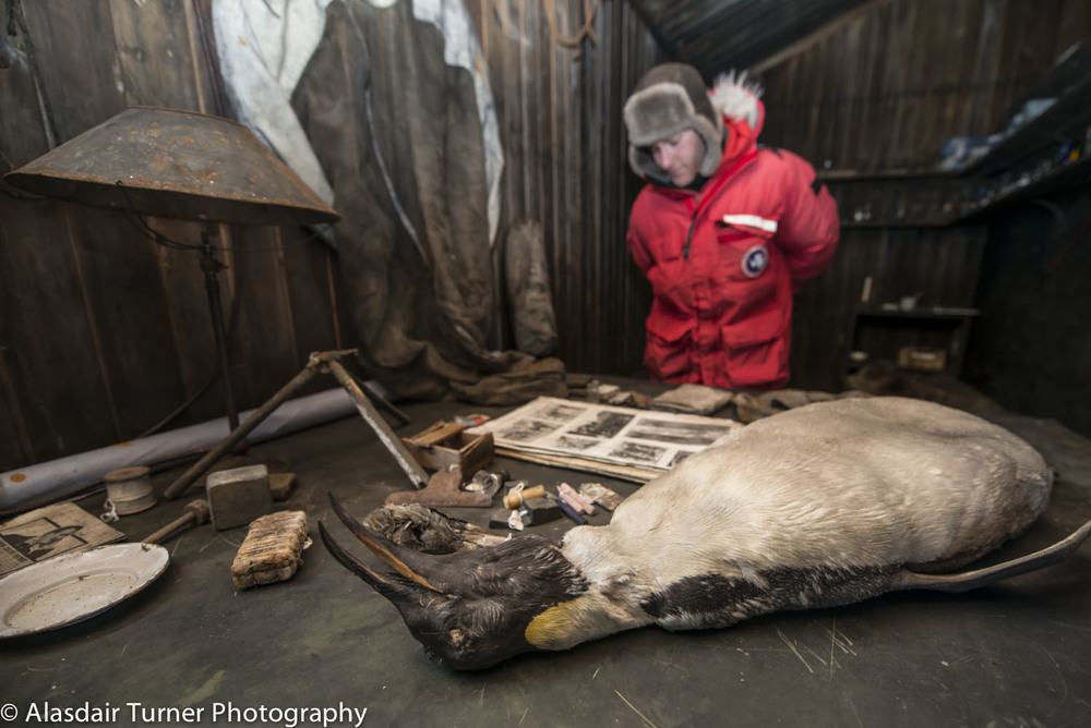 A penguin still lays on Scott's desk inside the Terra Nova hut.