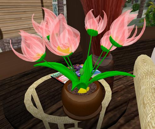 plantpets_013.jpg