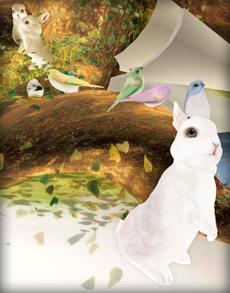 bunnies-birds