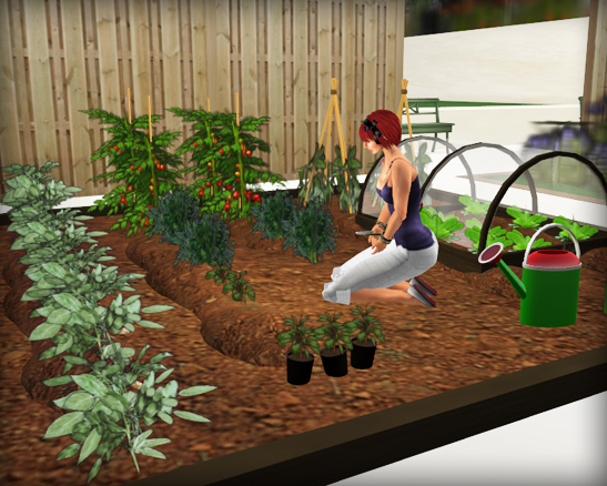 belle belle veg garden
