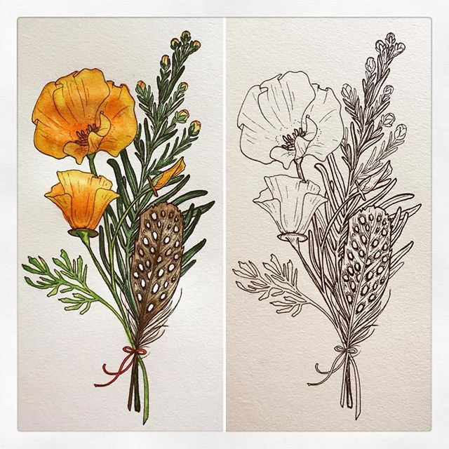 First try at a tattoo design for a friend, with coast redwood, California poppy, and quail feather. B&W or color? What do you think, @kyrateigenn? More coming soon 😘 . #californiapoppy #coastredwood #quailfeather #california #tattoodesign #penandink #ink #inkdrawing #micronpen #watercolor #botanicalillustration #floraltattoo