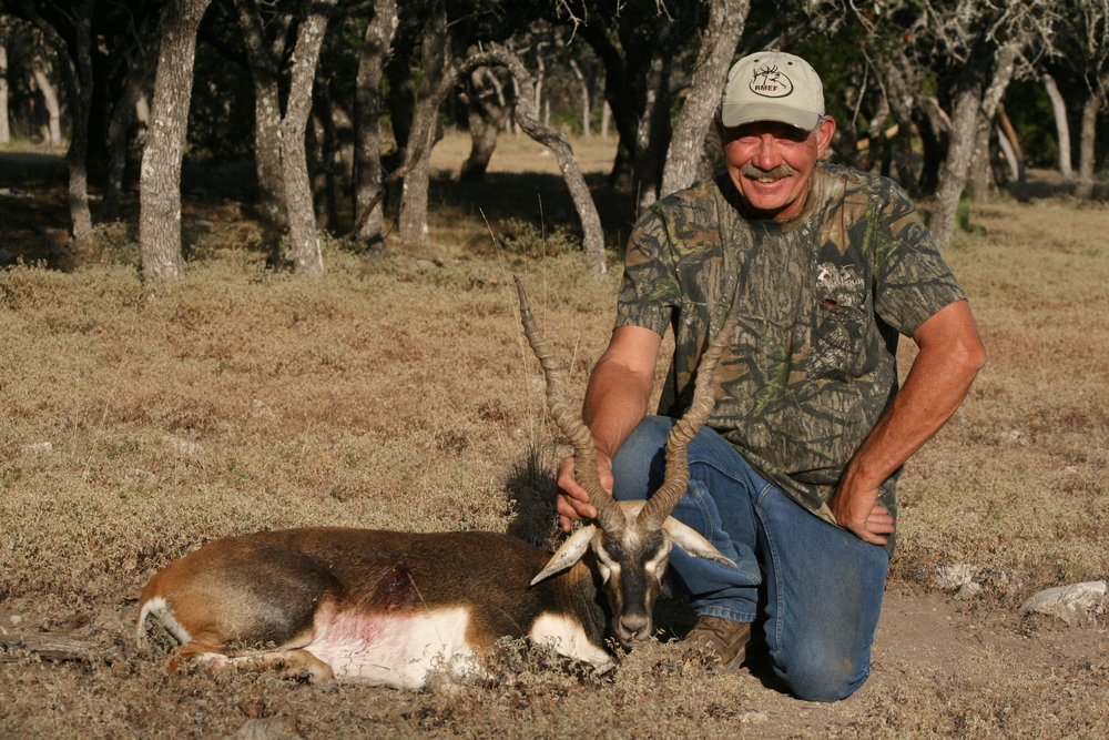 Karlton Blackbuck.JPG