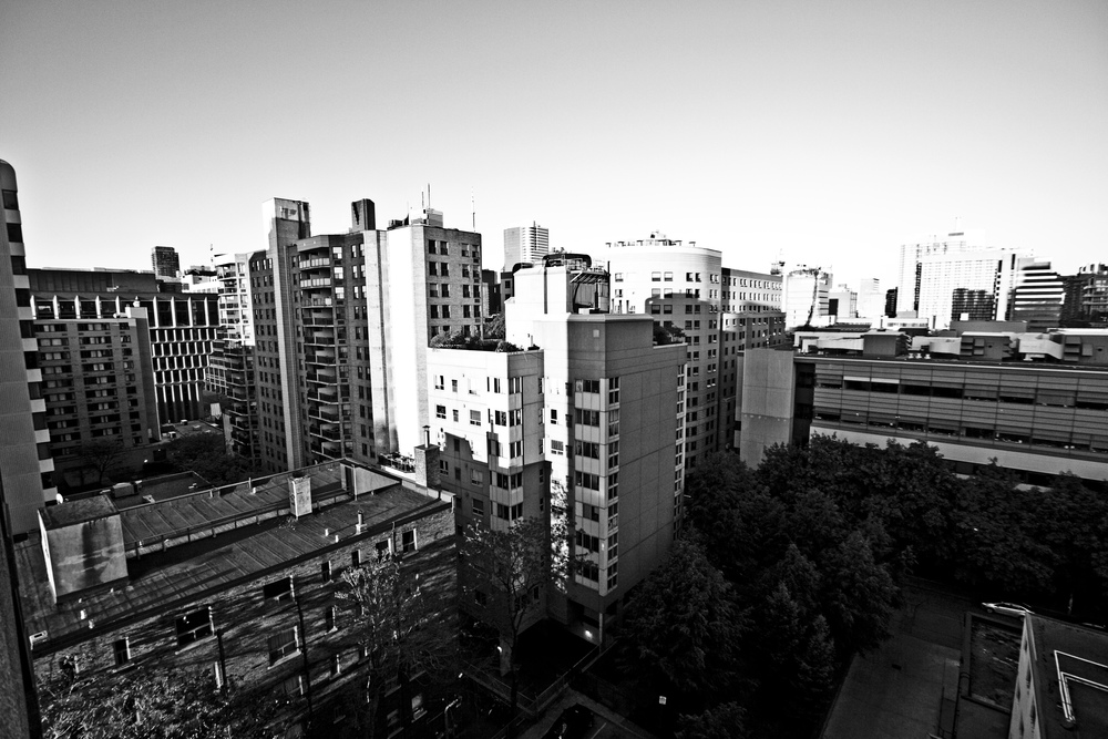 Sid Naidu Photography 2013 (c)