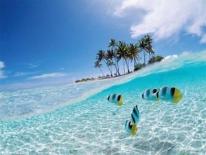 Pesona-Pantai-Bunaken-Manado-659x494.jpg