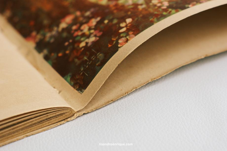 Fotolibros de Bodas - Viejos Libros de Novios - Libros Antiguos (6)
