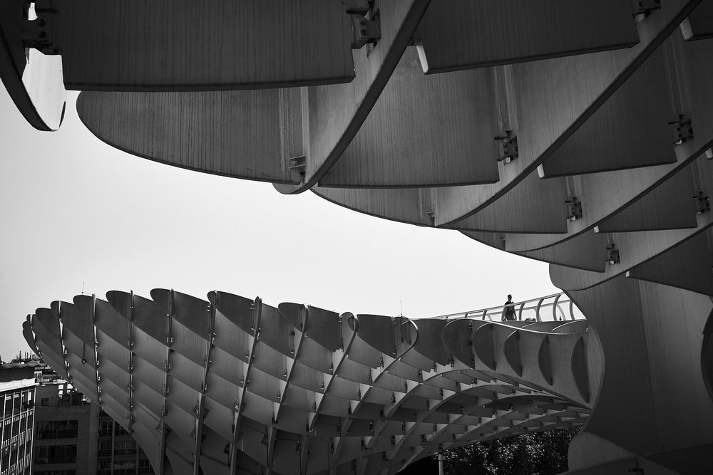 Catedral Sevilla DSC03871.jpg
