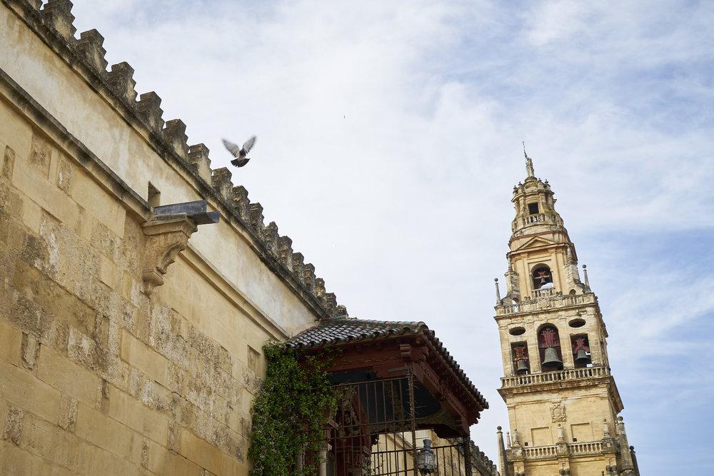 Córdoba y Granada DSC03898.jpg