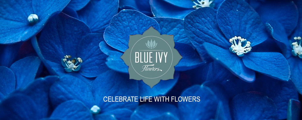 Chattanooga Florist Blue Ivy Flowers