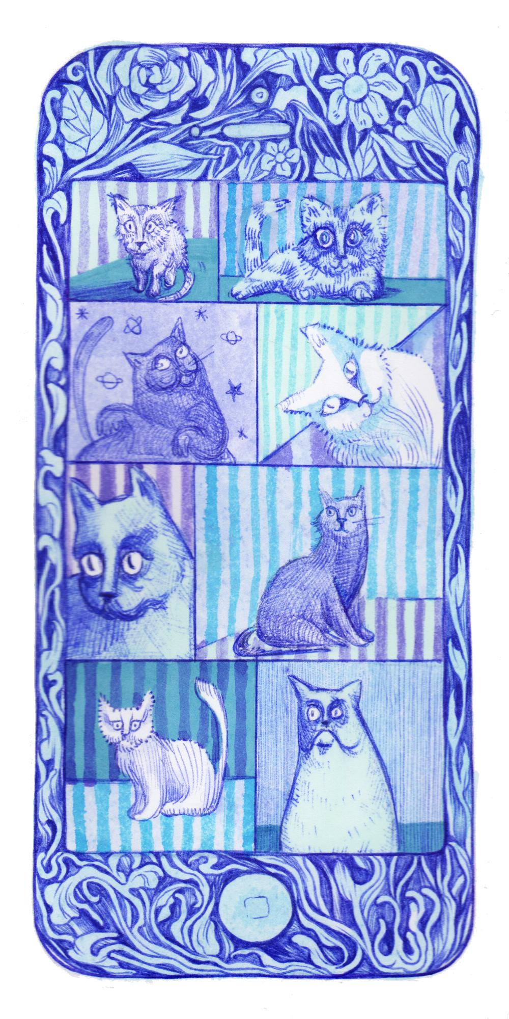 12_cats.jpg
