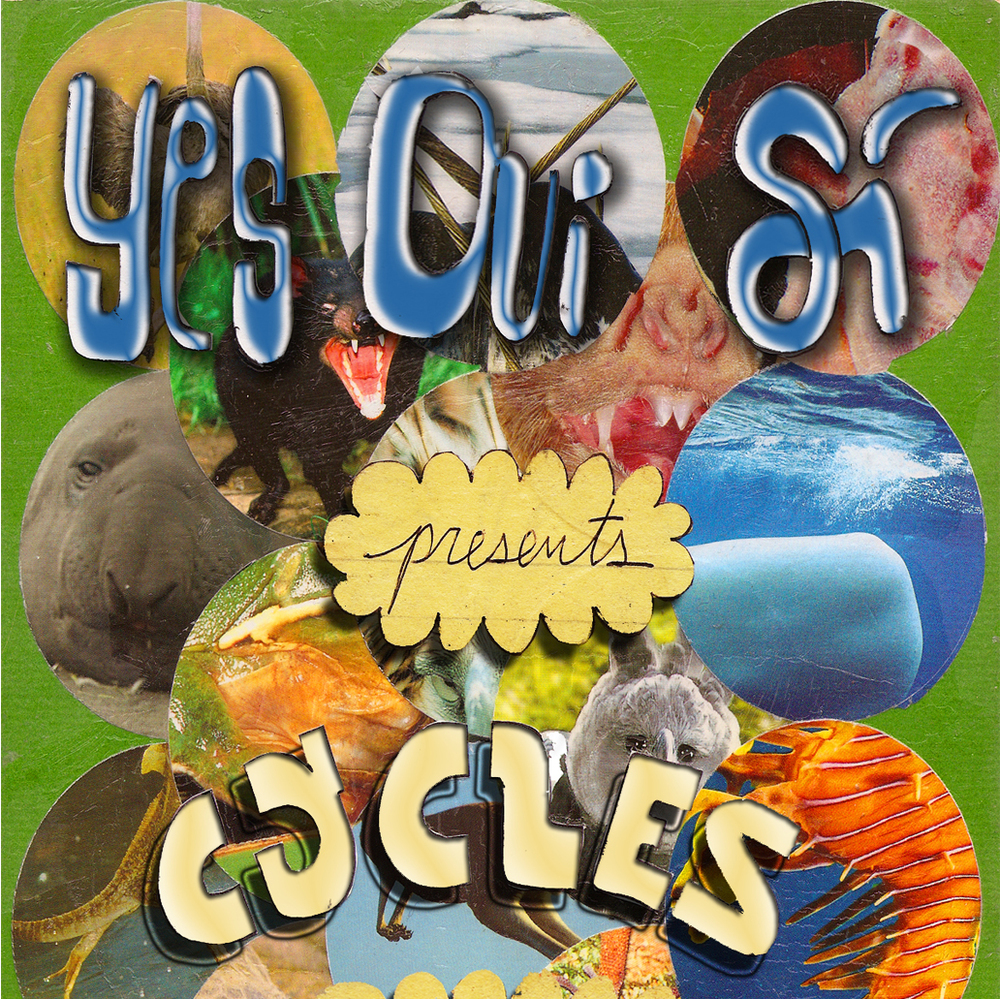 4 cycles.jpg