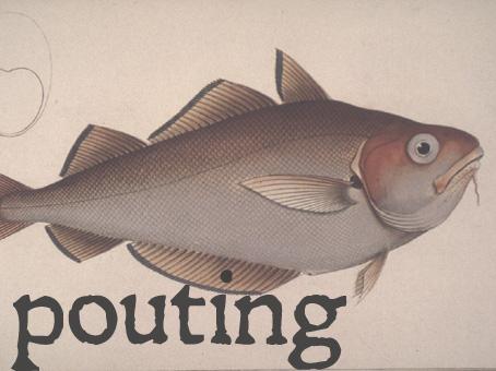 pouting.jpg