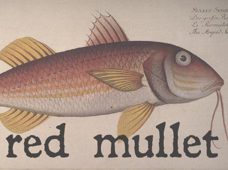 red mull.jpg