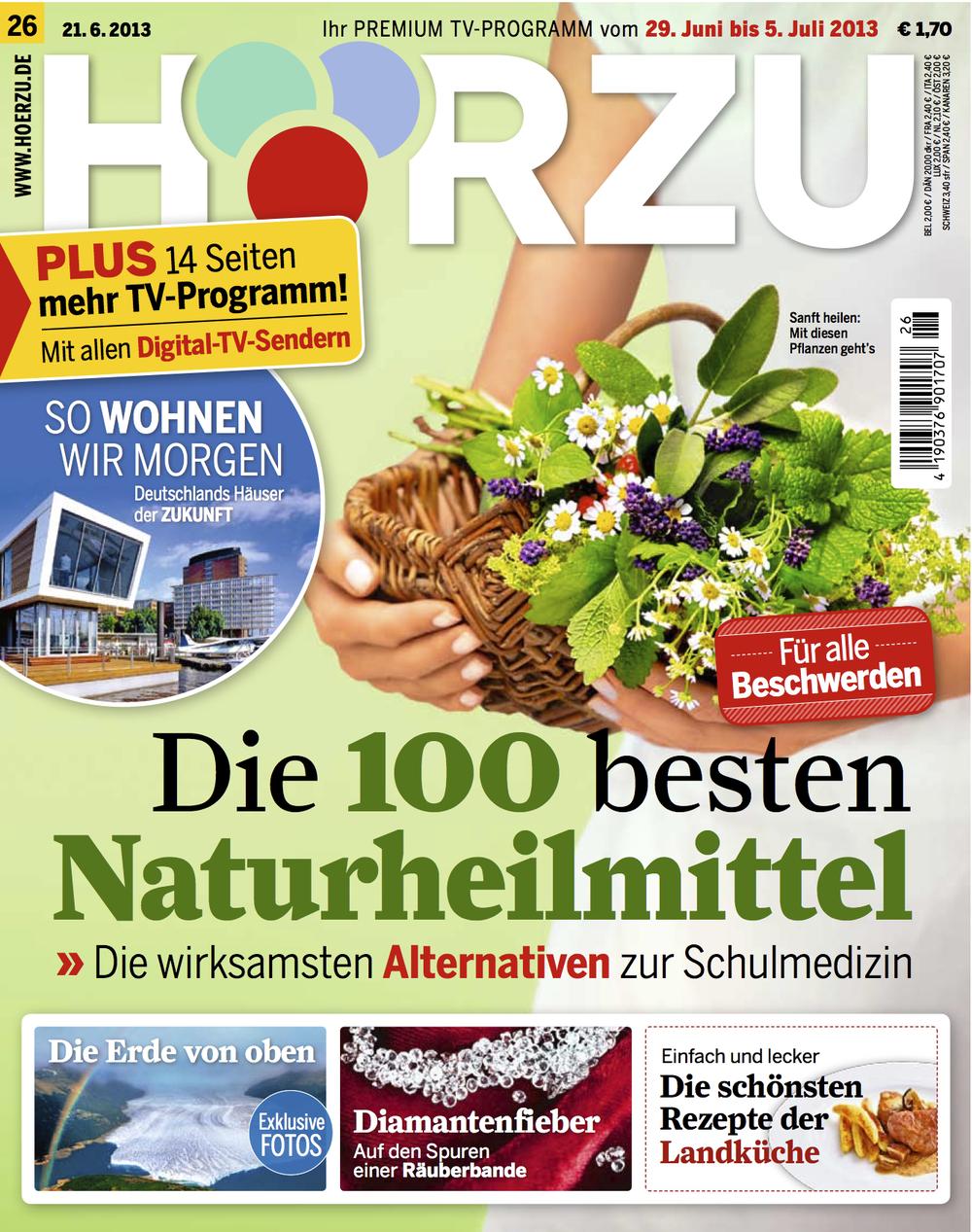 HZ_21.6.2013_Cover.jpg