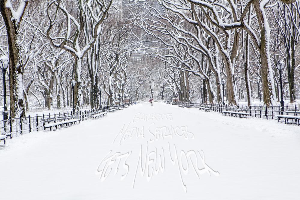 SNOWNY5.jpg