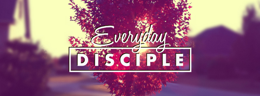 Everyday Disciple    Apr. 2014 - June 2014