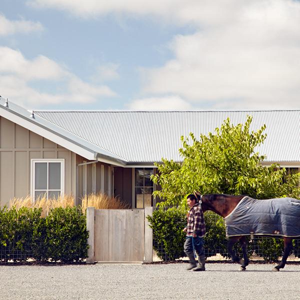 Horse Farm, Petaluma, CA